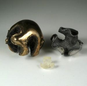 Psuedibranchs